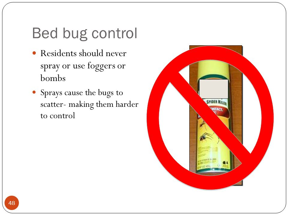 Bed bug control Residents should never spray or use foggers or bombs