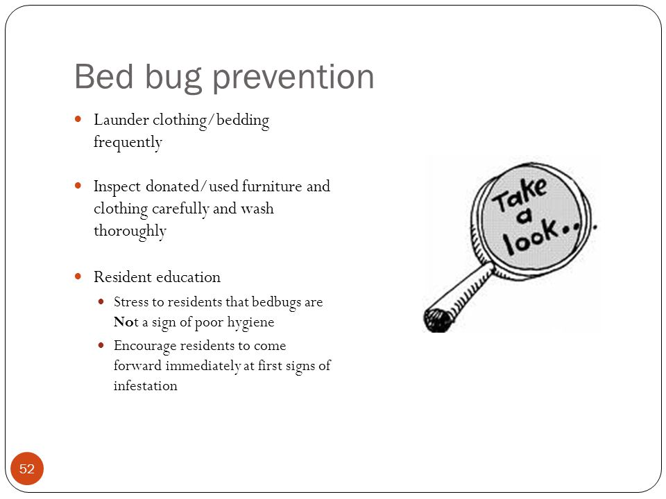 Bed bug prevention Launder clothing/bedding frequently