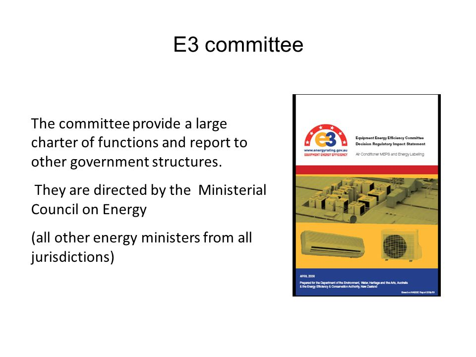 E3 committee The committee provide a large charter of functions and report to other government structures.