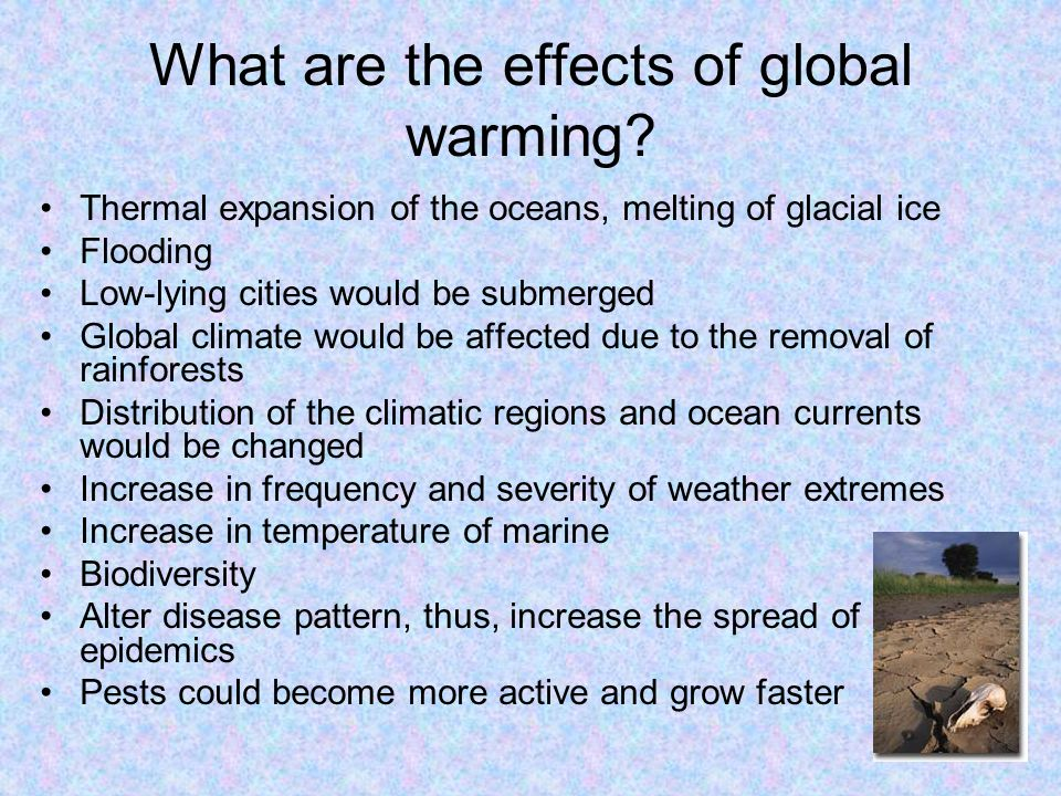 What are the effects of global warming