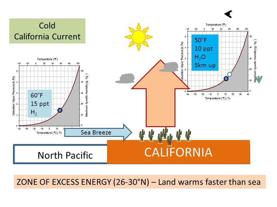 CALIFORNIA North Pacific Cold California Current