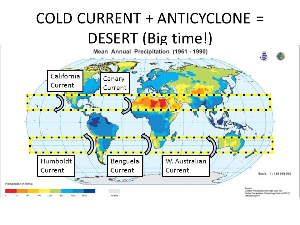 COLD CURRENT + ANTICYCLONE = DESERT (Big time!)