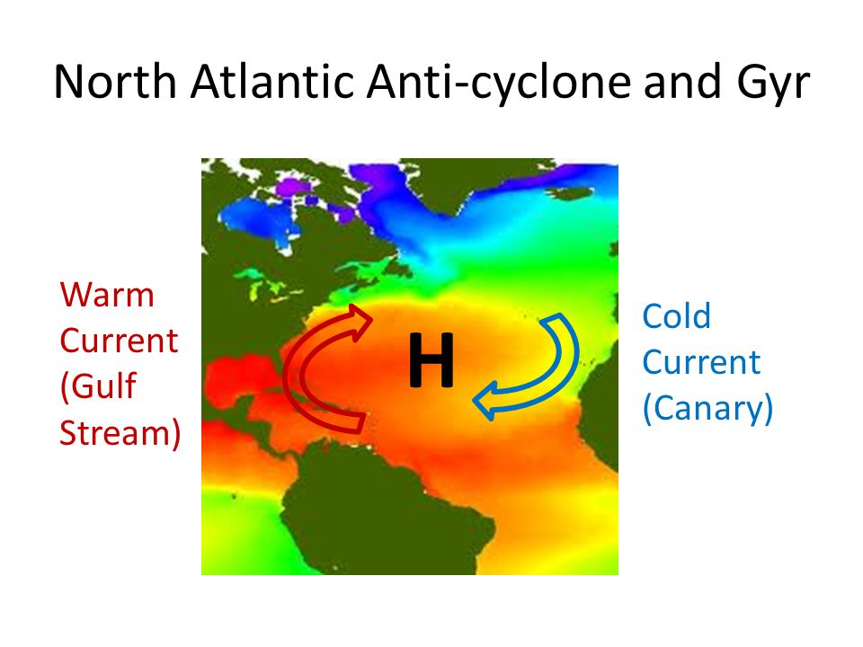 North Atlantic Anti-cyclone and Gyr