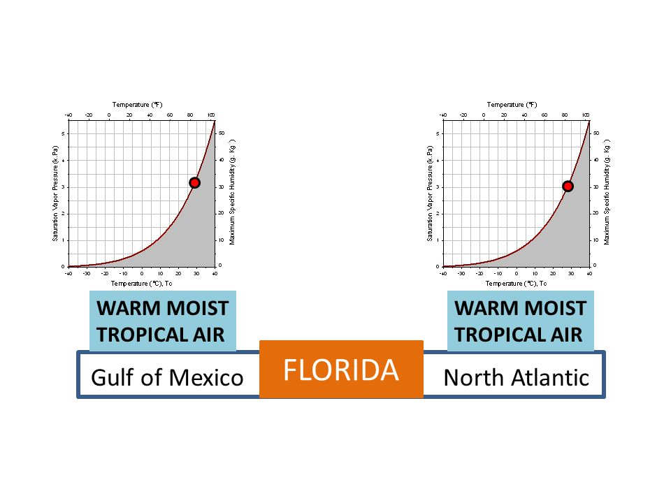 FLORIDA Gulf of Mexico North Atlantic WARM MOIST TROPICAL AIR