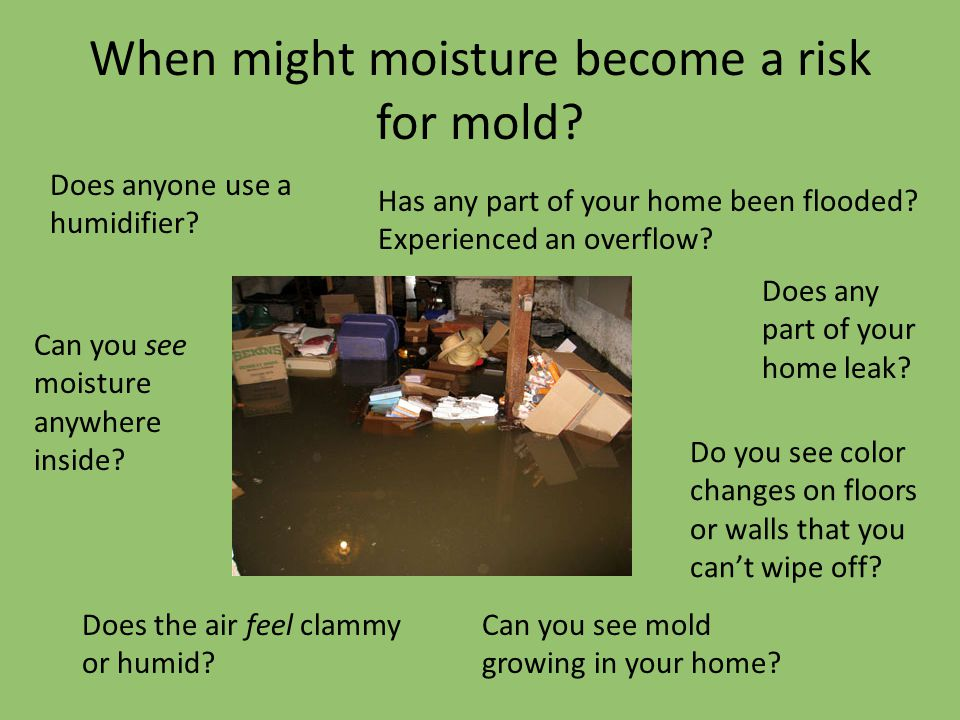 When might moisture become a risk for mold