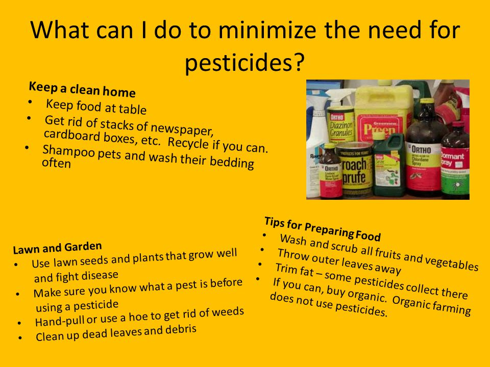 What can I do to minimize the need for pesticides