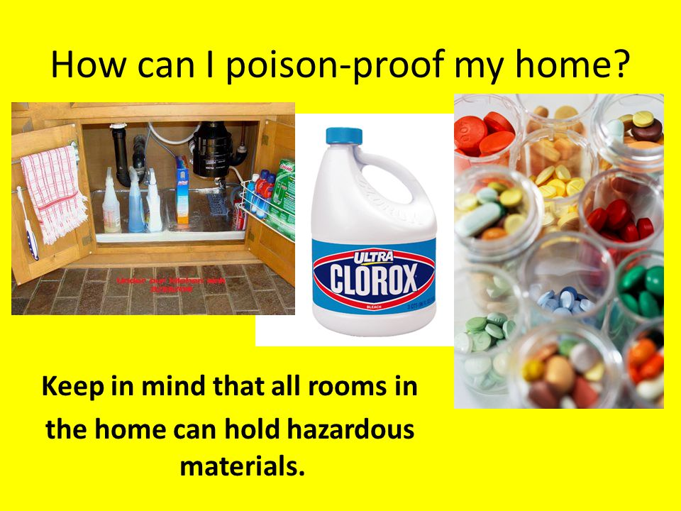 How can I poison-proof my home