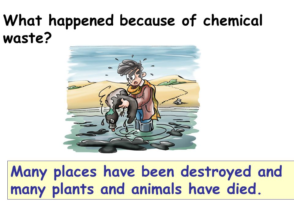 What happened because of chemical waste