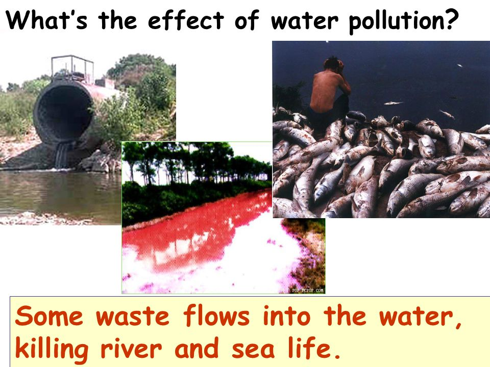 Some waste flows into the water, killing river and sea life.