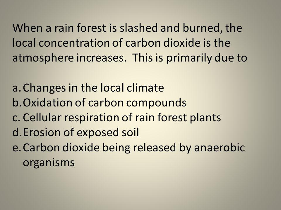 When a rain forest is slashed and burned, the local concentration of carbon dioxide is the atmosphere increases. This is primarily due to