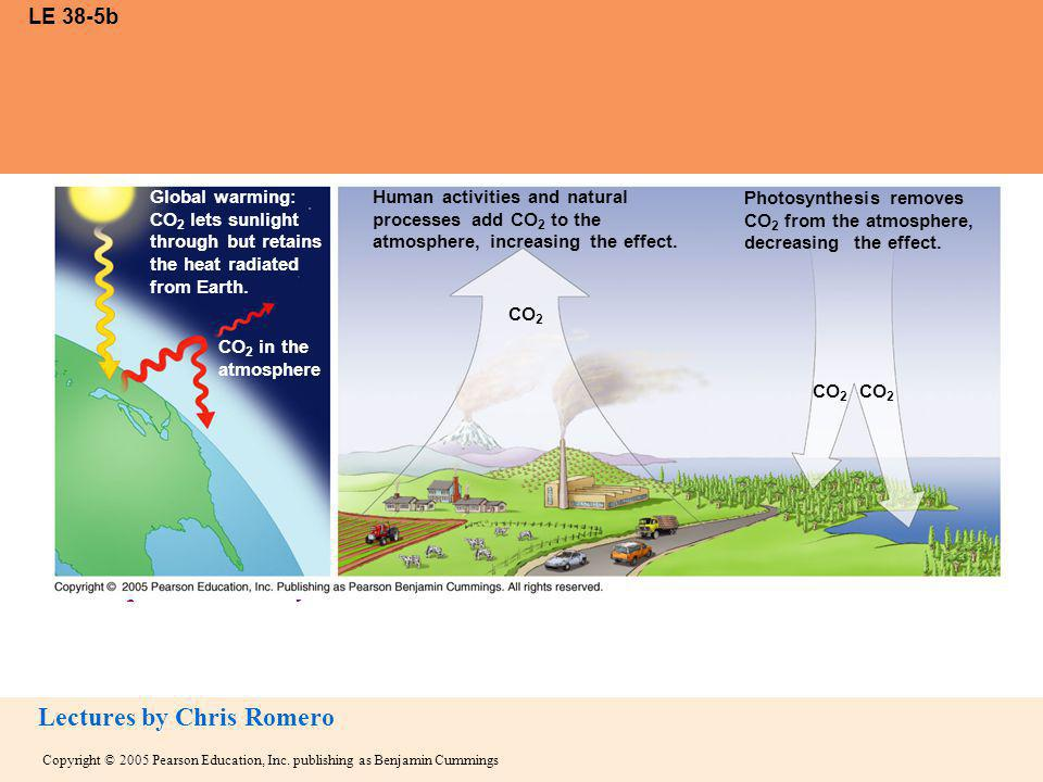 LE 38-5b Global warming: CO2 lets sunlight through but retains