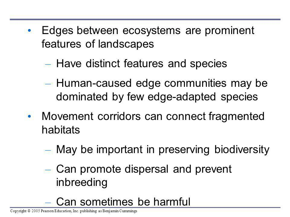 Edges between ecosystems are prominent features of landscapes