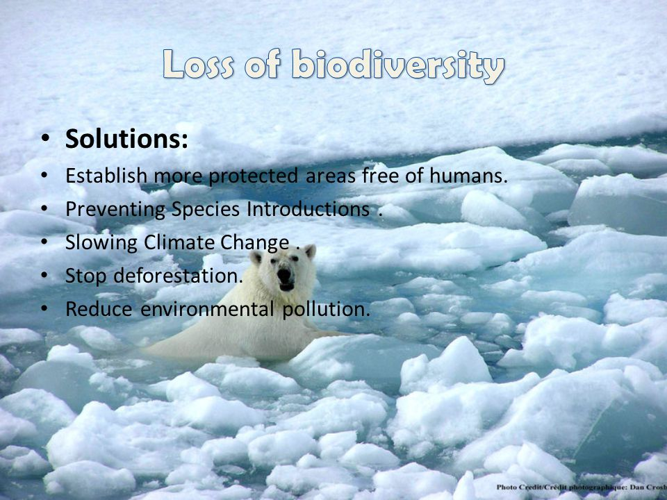 Loss of biodiversity Solutions: