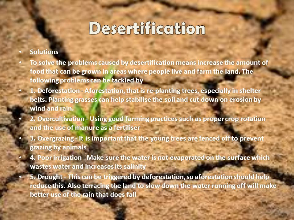 Desertification Solutions