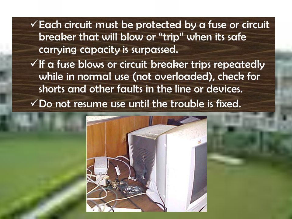 Each circuit must be protected by a fuse or circuit breaker that will blow or trip when its safe carrying capacity is surpassed.
