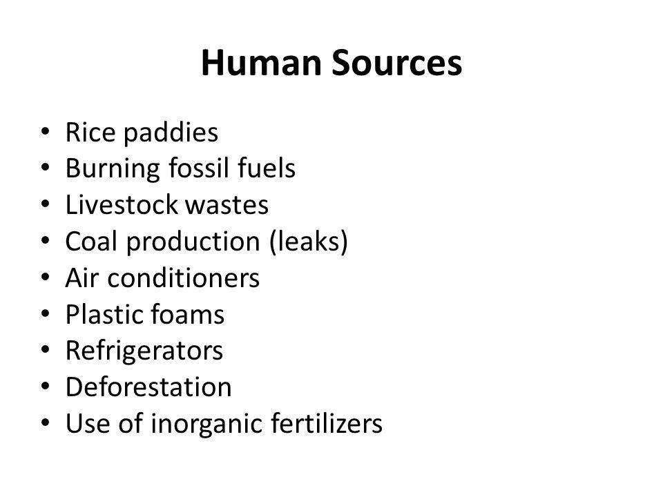 Human Sources Rice paddies Burning fossil fuels Livestock wastes