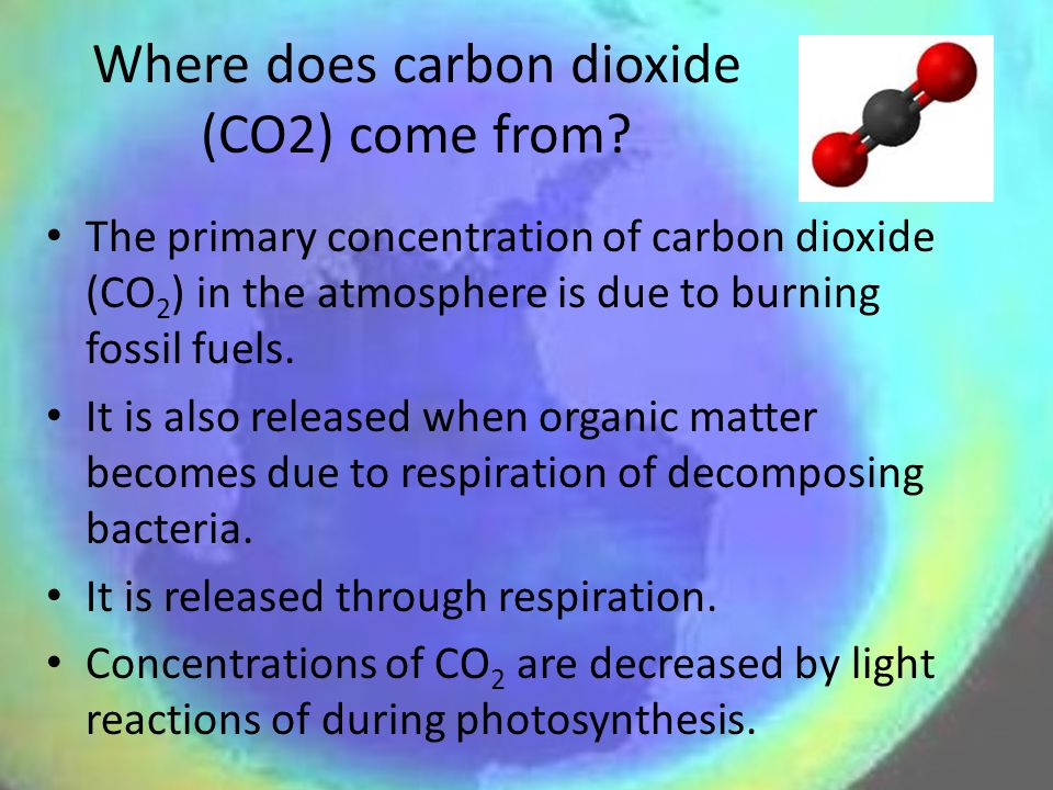 Where does carbon dioxide (CO2) come from