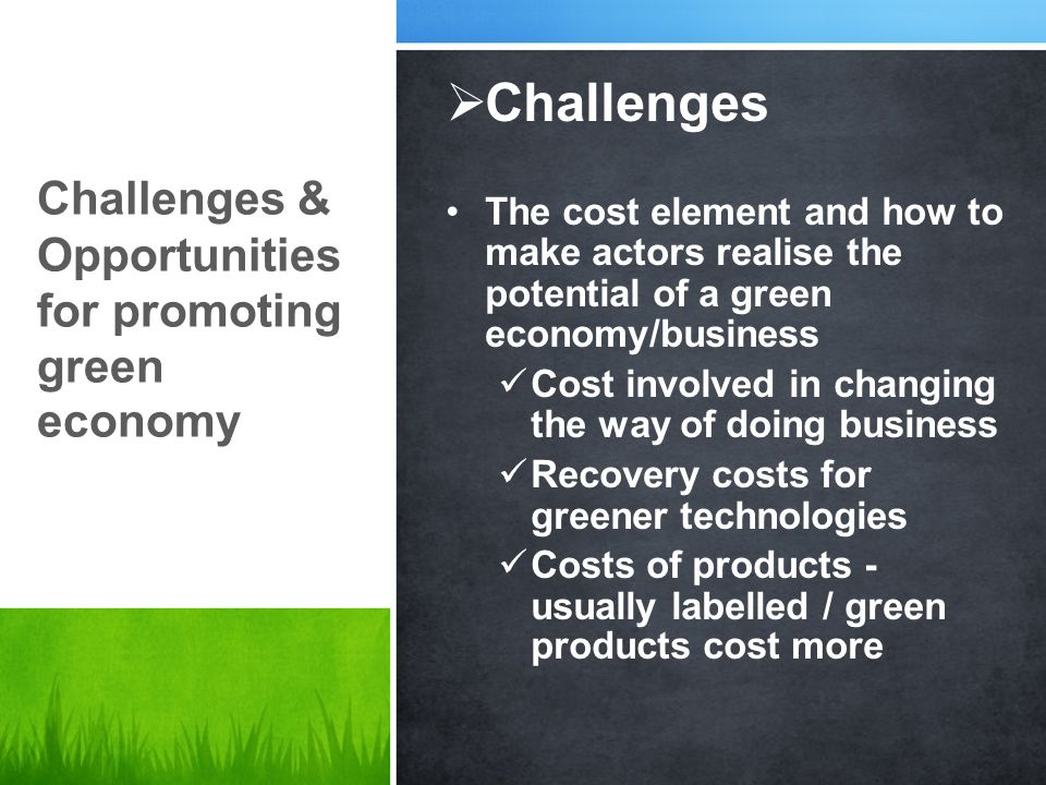 Challenges Challenges & Opportunities for promoting green economy