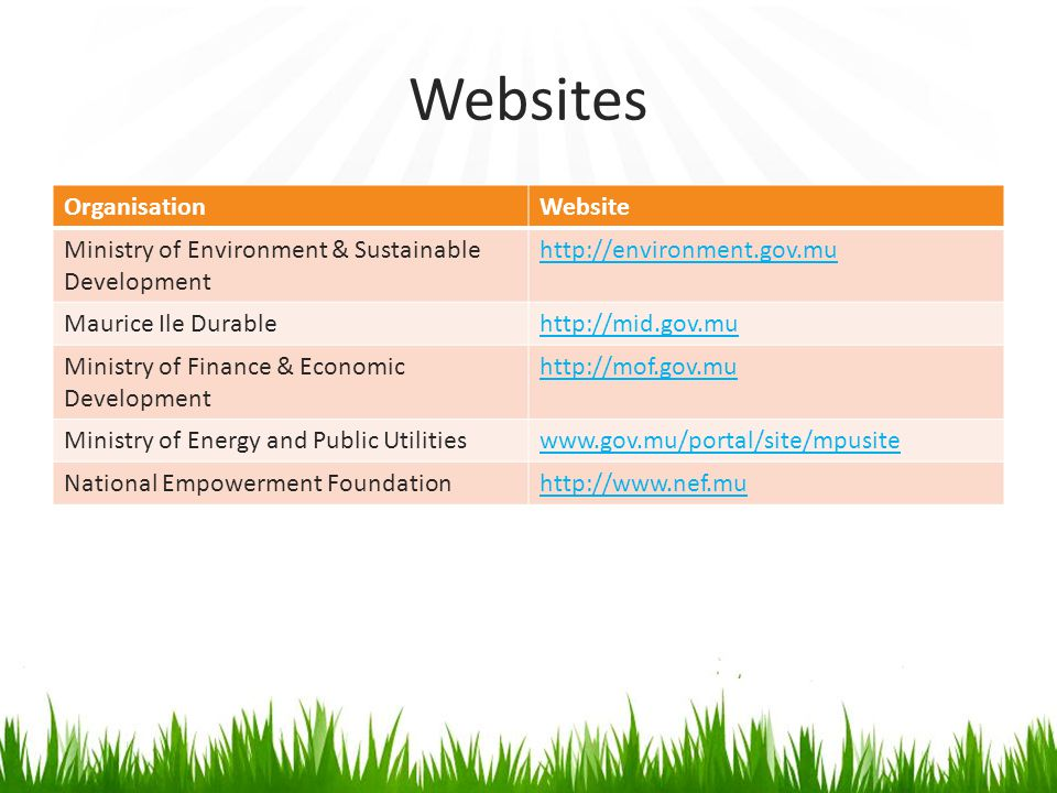 Websites Organisation Website