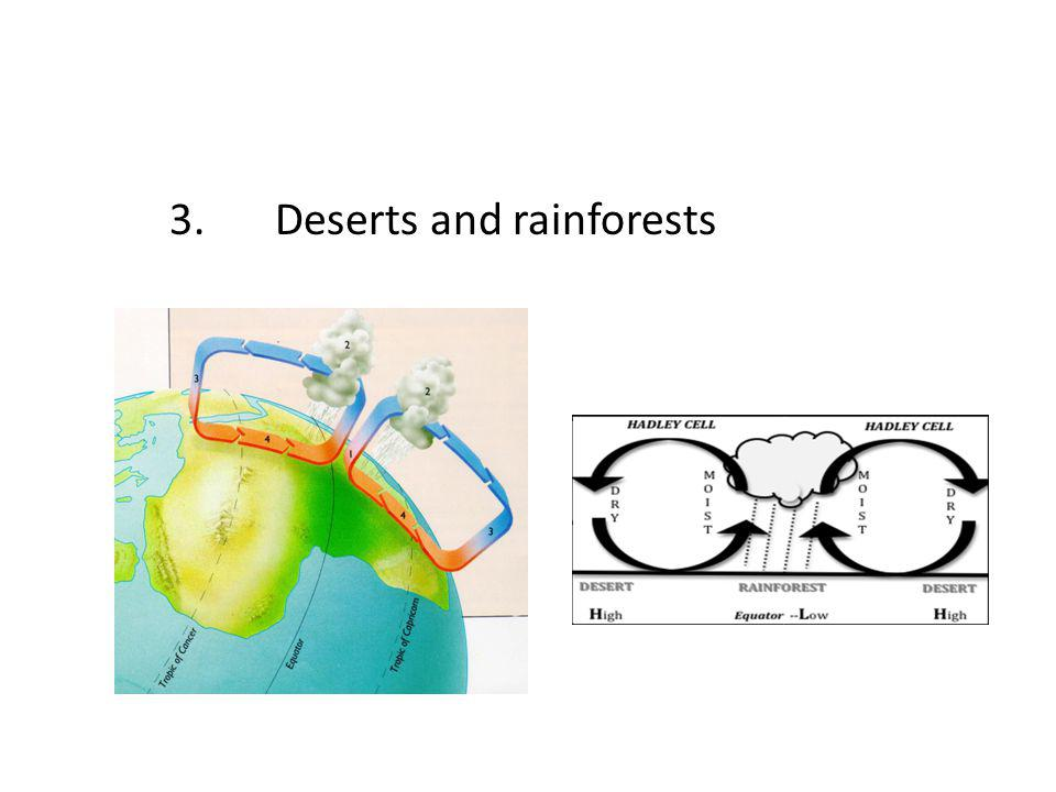 3. Deserts and rainforests