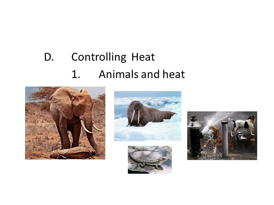 D. Controlling Heat 1. Animals and heat
