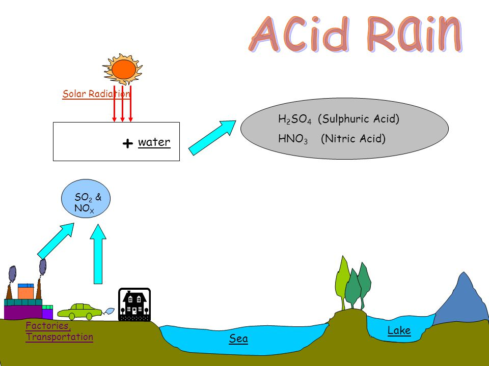 Acid Rain + water H2SO4 (Sulphuric Acid) HNO3 (Nitric Acid) Lake Sea