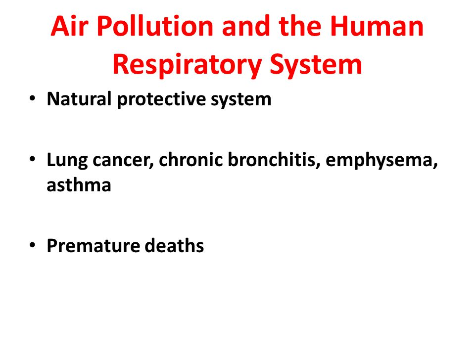Air Pollution and the Human Respiratory System