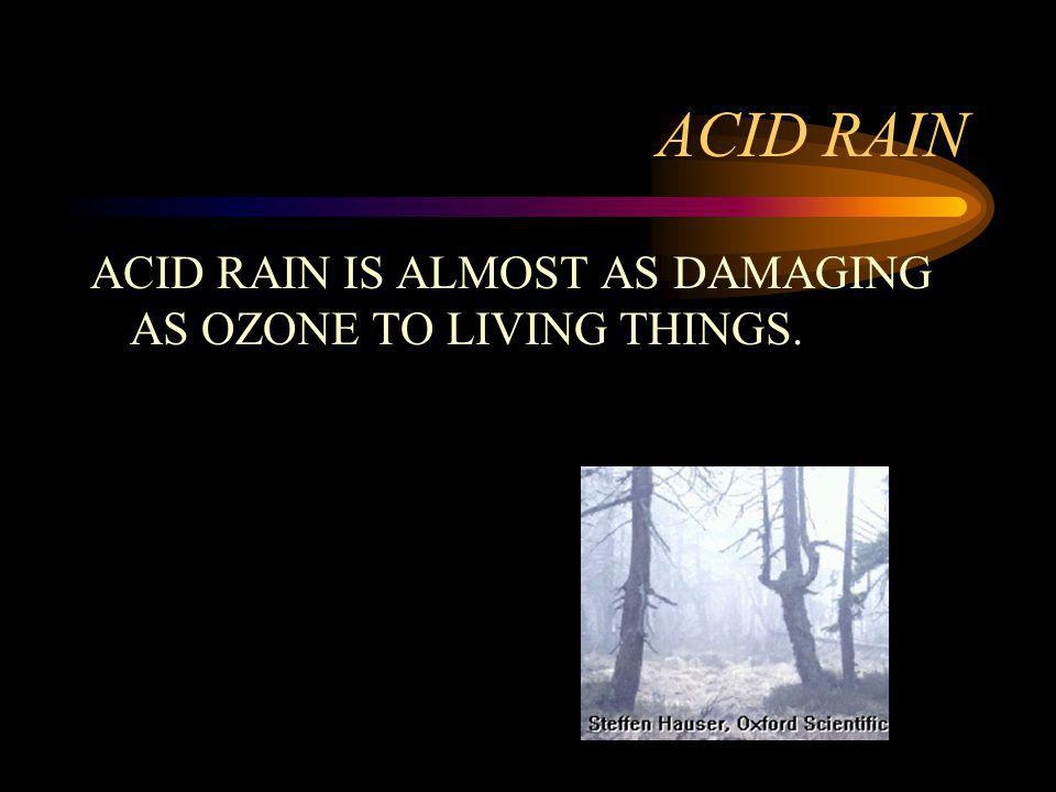 ACID RAIN ACID RAIN IS ALMOST AS DAMAGING AS OZONE TO LIVING THINGS.