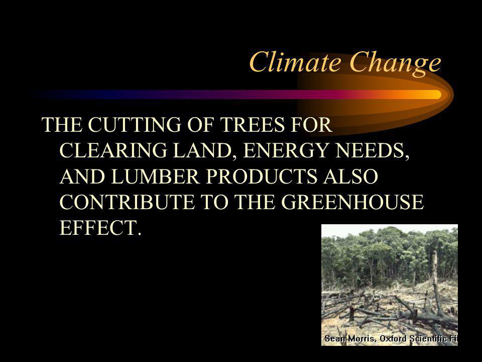Climate Change THE CUTTING OF TREES FOR CLEARING LAND, ENERGY NEEDS, AND LUMBER PRODUCTS ALSO CONTRIBUTE TO THE GREENHOUSE EFFECT.