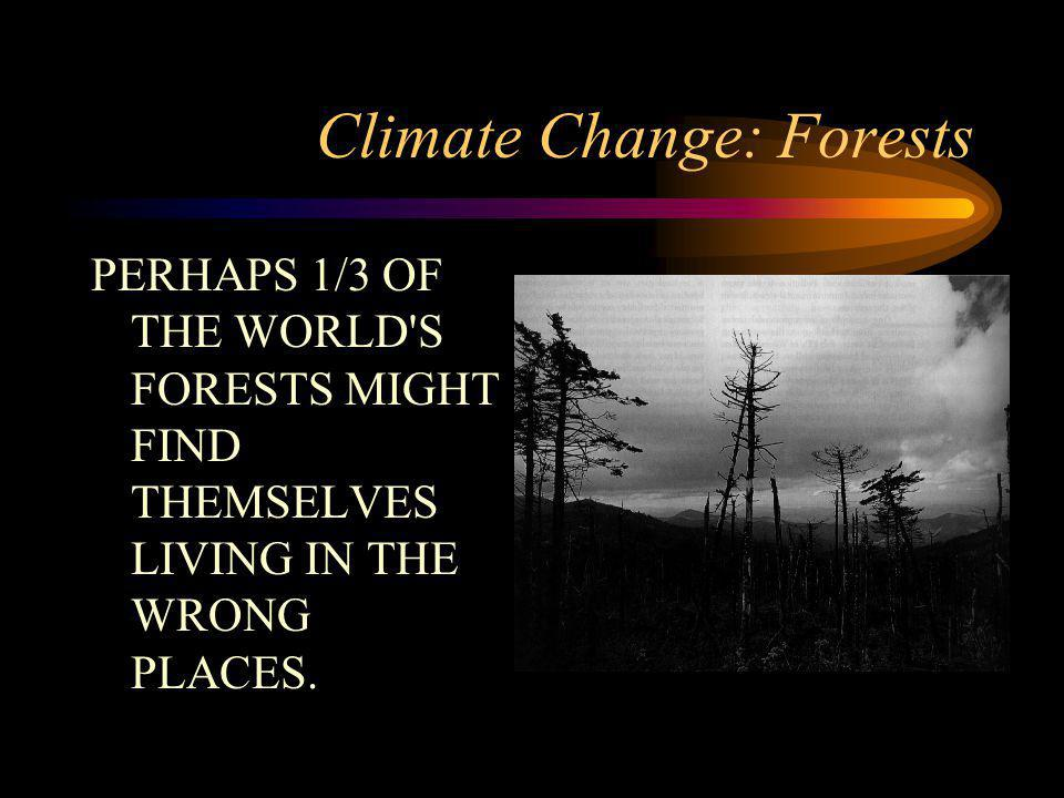 Climate Change: Forests