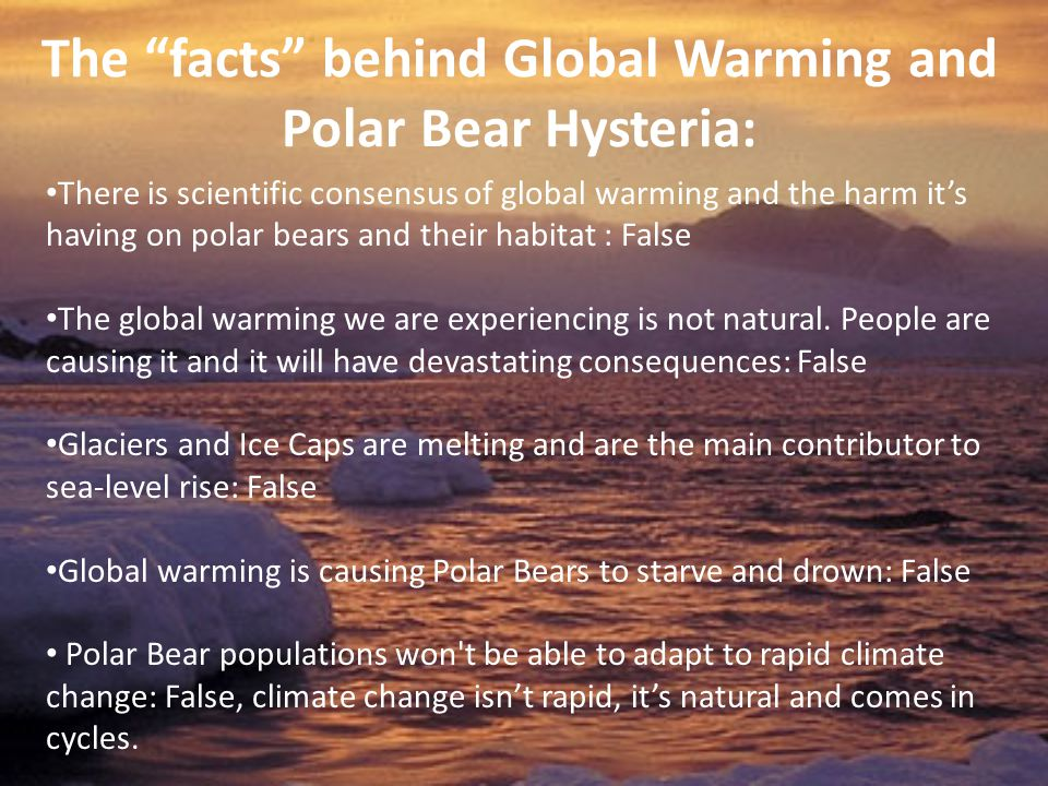 The facts behind Global Warming and Polar Bear Hysteria: