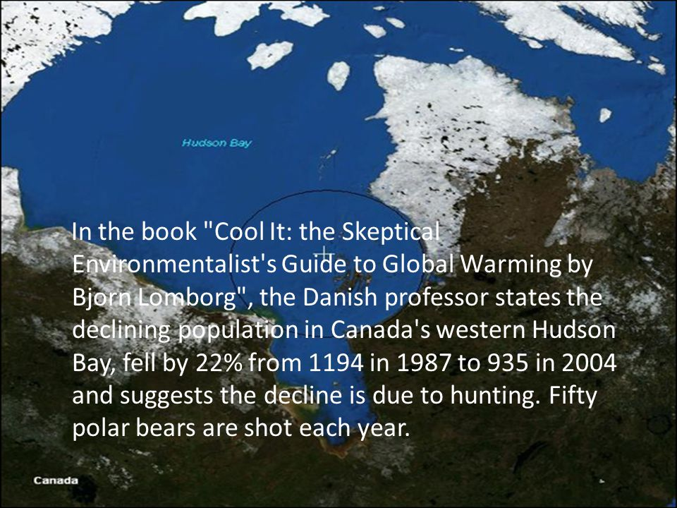 In the book Cool It: the Skeptical Environmentalist s Guide to Global Warming by Bjorn Lomborg , the Danish professor states the declining population in Canada s western Hudson Bay, fell by 22% from 1194 in 1987 to 935 in 2004 and suggests the decline is due to hunting.