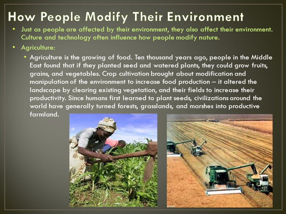 How People Modify Their Environment