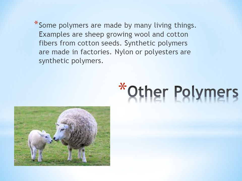 Some polymers are made by many living things