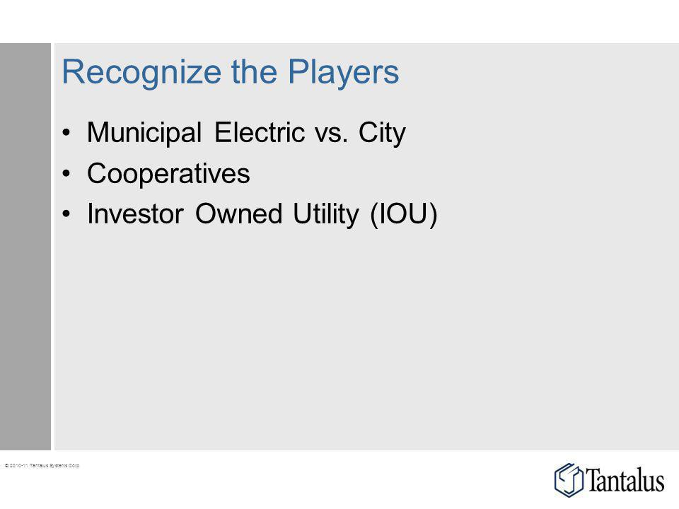 Recognize the Players Municipal Electric vs. City Cooperatives