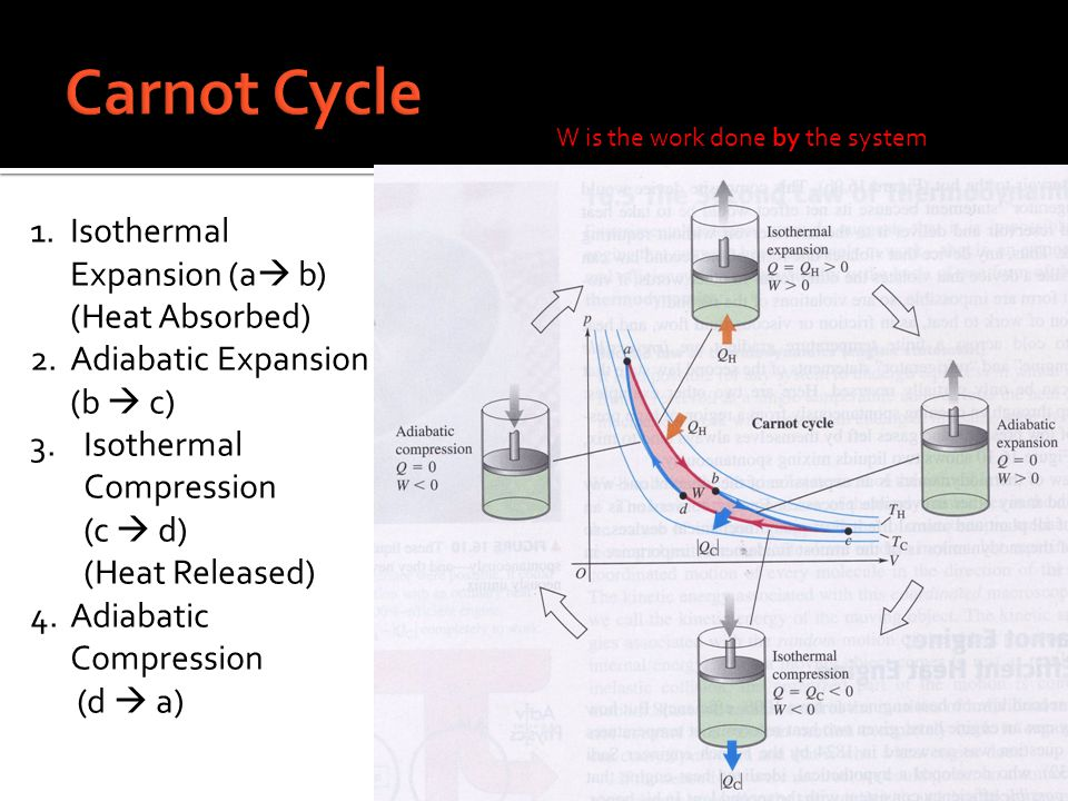Carnot Cycle Isothermal Expansion (a b) (Heat Absorbed)
