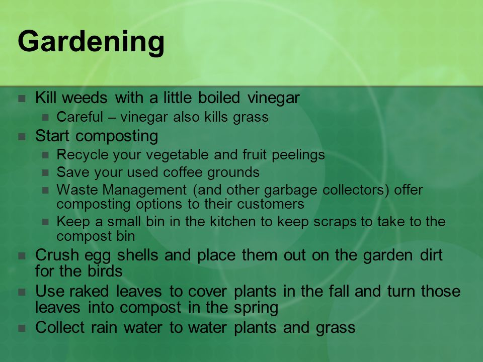 Gardening Kill weeds with a little boiled vinegar Start composting