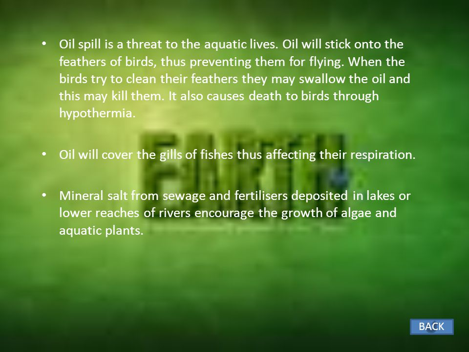 Oil will cover the gills of fishes thus affecting their respiration.