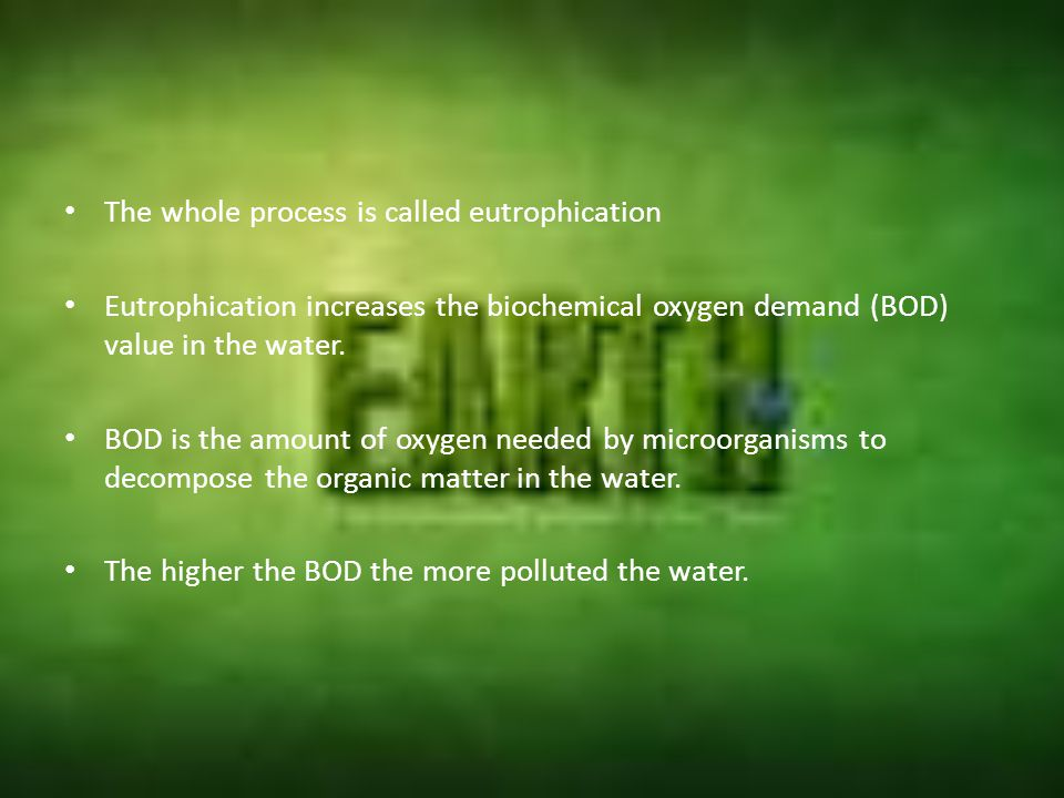 The whole process is called eutrophication