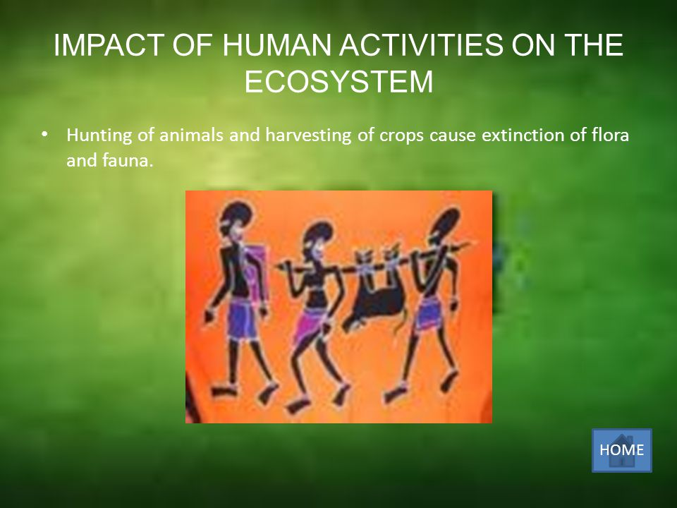IMPACT OF HUMAN ACTIVITIES ON THE ECOSYSTEM