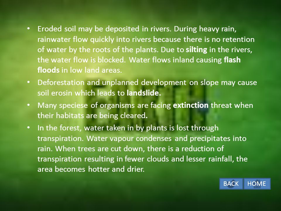 Eroded soil may be deposited in rivers