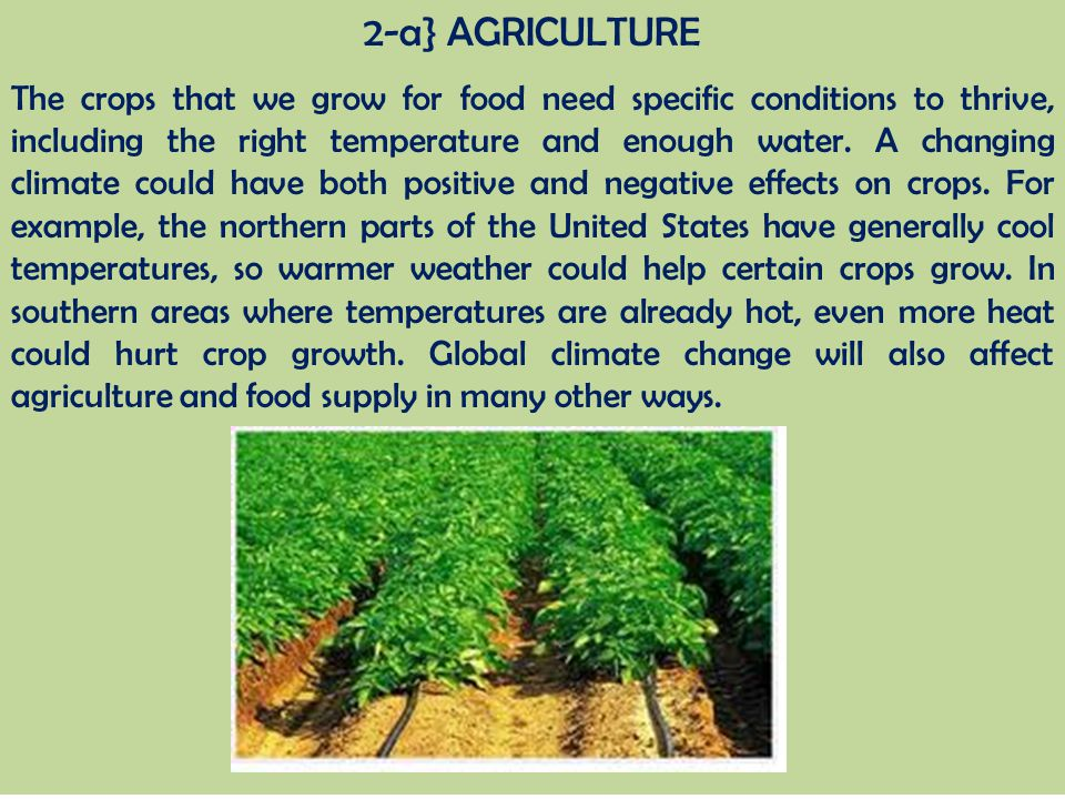 2-a} AGRICULTURE