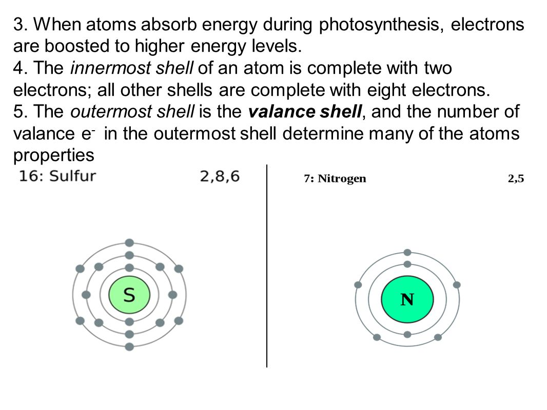 3. When atoms absorb energy during photosynthesis, electrons are boosted to higher energy levels.
