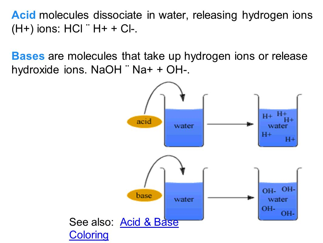 Acid molecules dissociate in water, releasing hydrogen ions (H+) ions: HCl ¨ H+ + Cl-.