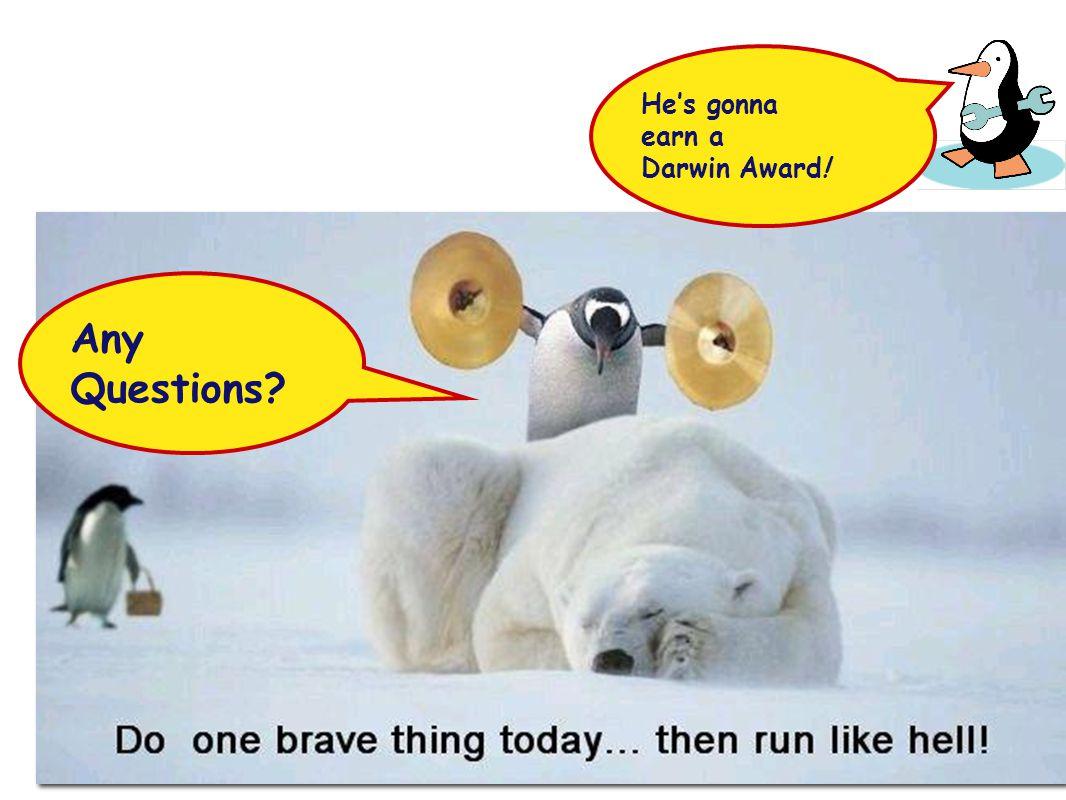 He's gonna earn a Darwin Award!