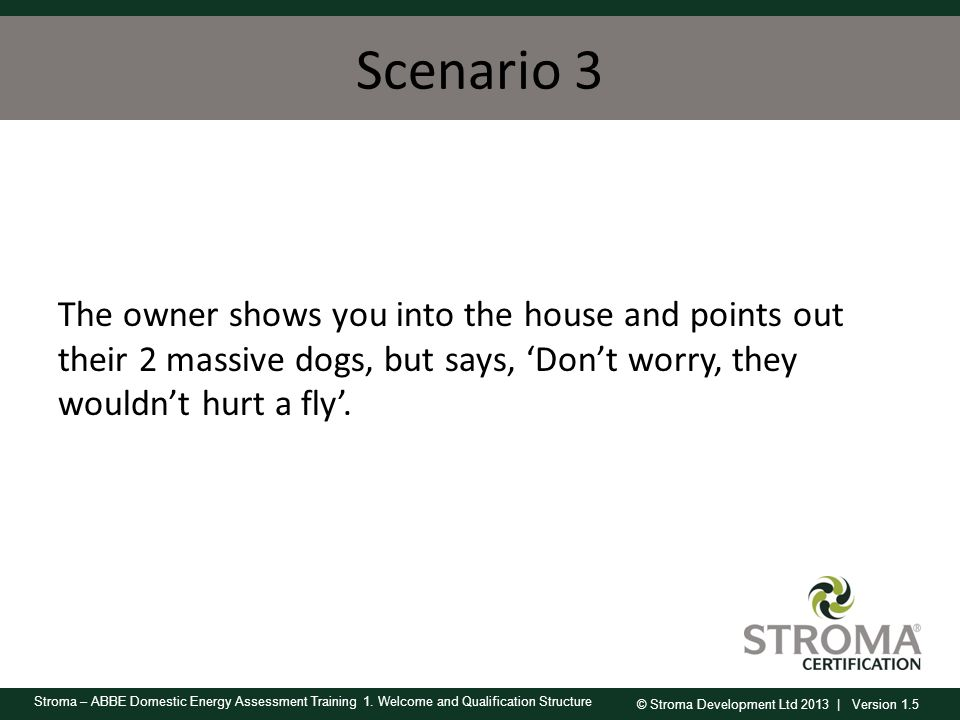 Scenario 3 The owner shows you into the house and points out their 2 massive dogs, but says, 'Don't worry, they wouldn't hurt a fly'.