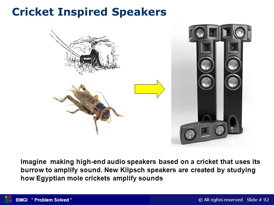 Cricket Inspired Speakers