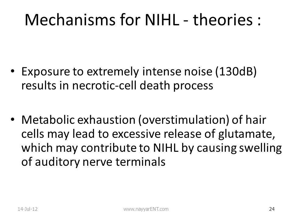 Mechanisms for NIHL - theories :