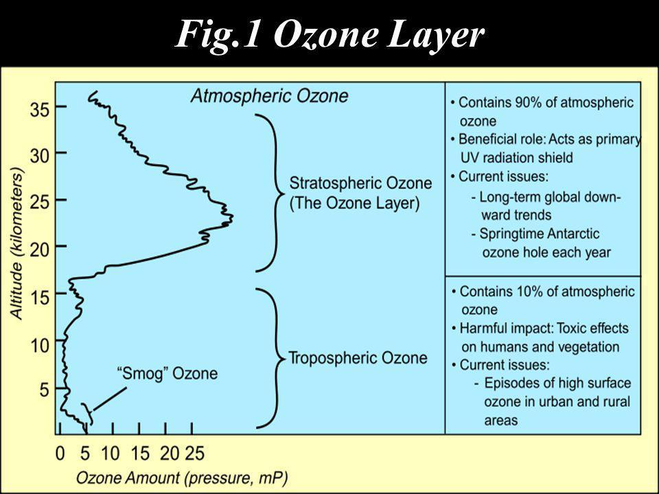 Fig.1 Ozone Layer