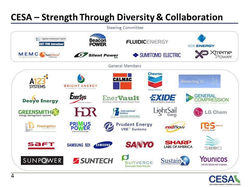 CESA – Strength Through Diversity & Collaboration